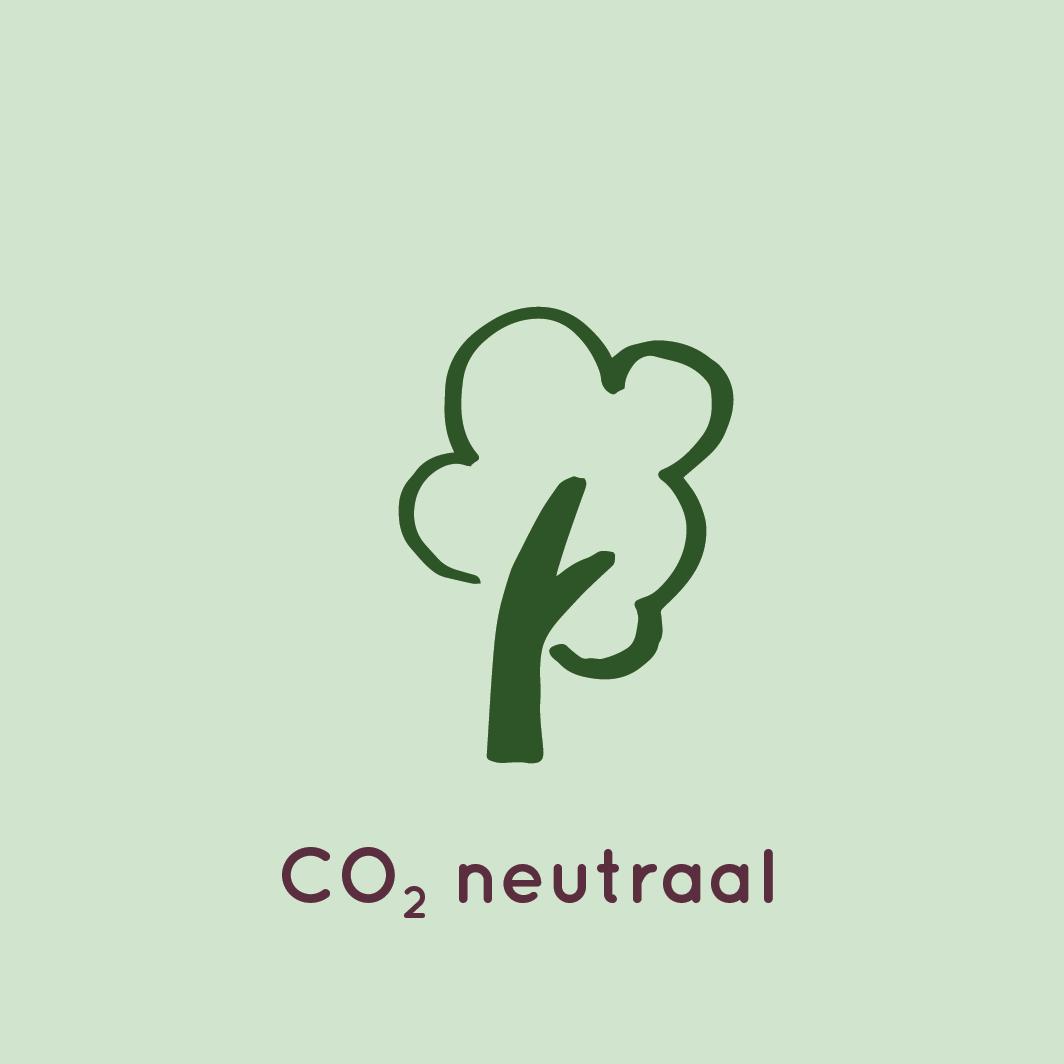 CO2 Neutraal icoon