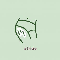 Striae Icoon