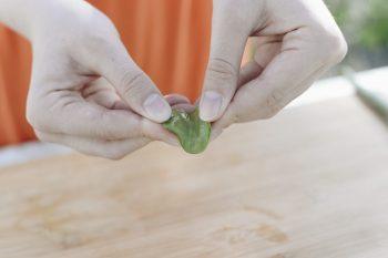 Stap 1 - Snijd het blad van de plant