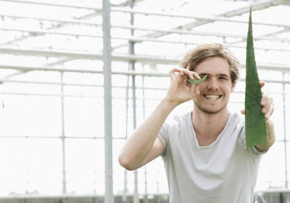 Dr. Green Aloe vera - Freek met een blad voor zijn oog