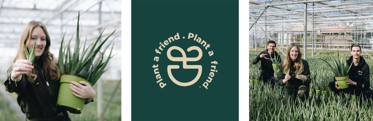 banner plant a friend - Dr. Green Aloë vera kwekerij