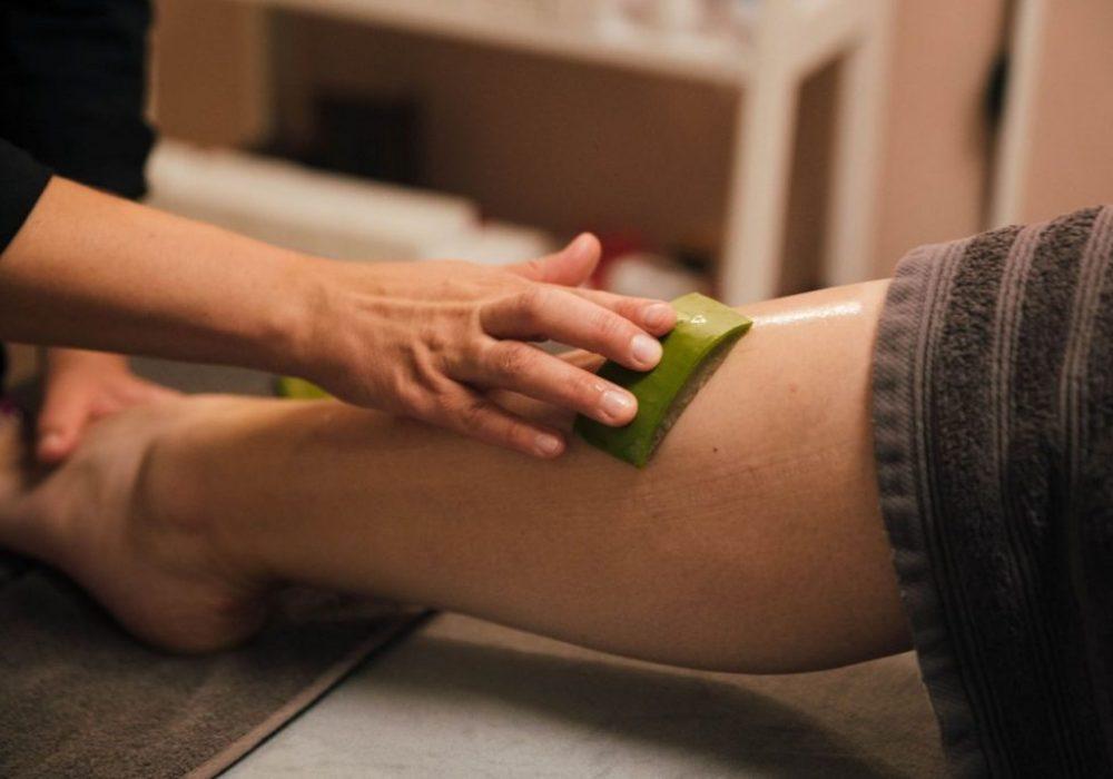 Aloe vera in salon 2 Dr. green